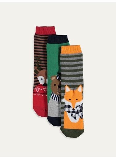 LC Waikiki 3'lü Çorap Renkli